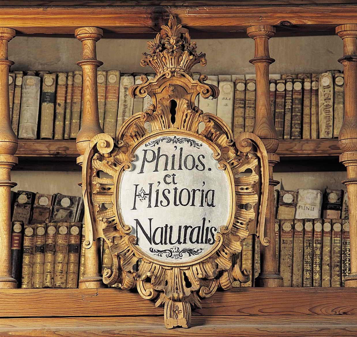 Biblioteca Antigua de la Universidad de Salamanca